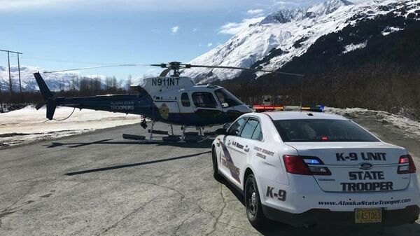 Полиция штата Аляска