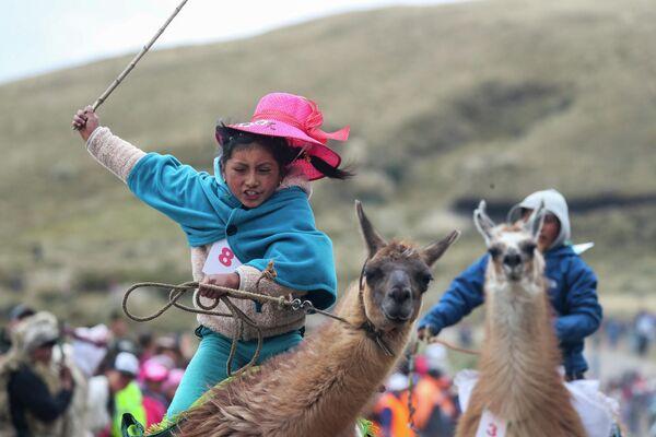 Участница традиционных гонок на ламах в национальном парке Лланганат, Эквадор