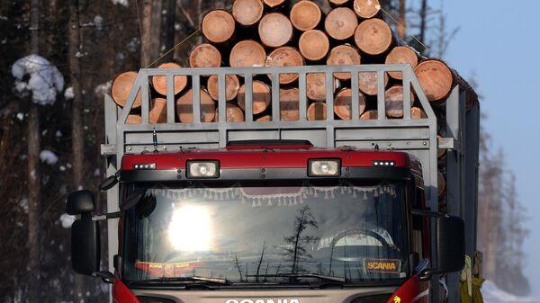Лесовоз везет древесину в Красноярском крае