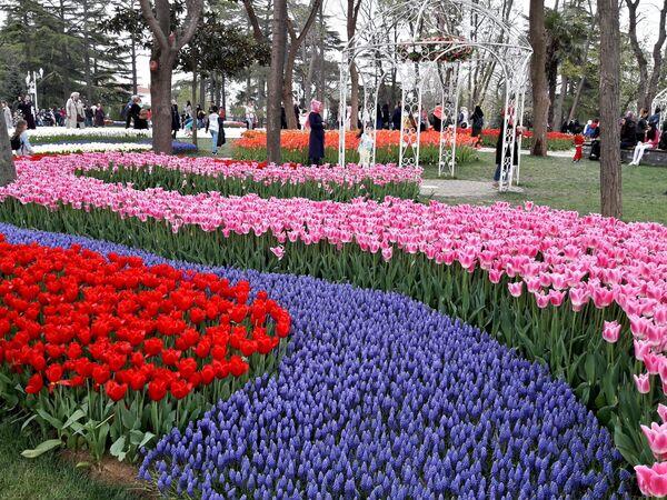 Парк Эмирган в Стамбуле