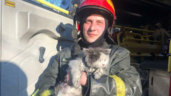 Сотрудник МЧС со спасенным из пожара котом