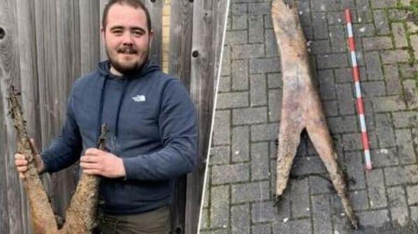 Мужчина нашел останки неизвестного существа в Англии