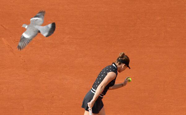 Симона Халеп (Румыния) в матче 1/8 финала женского одиночного разряда Открытого чемпионата Франции по теннису против Иги Швёнтек (Польша)