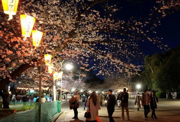 Посетители в парке Уэно в Токио