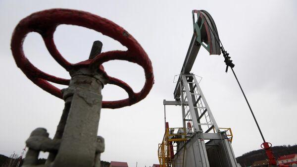 Цены на нефть снова перешли к росту