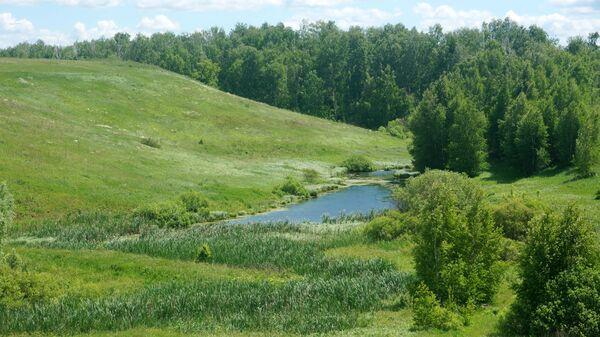 Река Мусорка, Ставропольский район Самарской области, Россия
