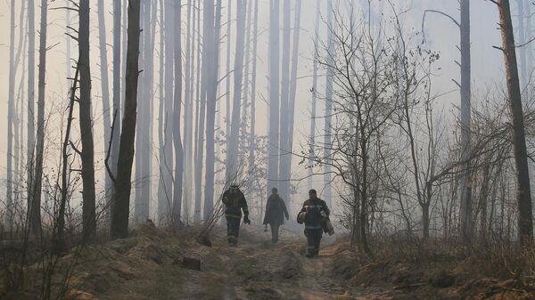 Сотрудники пожарной охраны во время тушения пожара в зоне отчуждения Чернобыльской АЭС