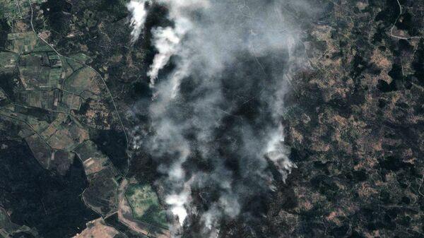 Снимок лесных пожаров в Чернобыльской зоне отчуждения, сделанный космическим аппаратом Роскосмоса