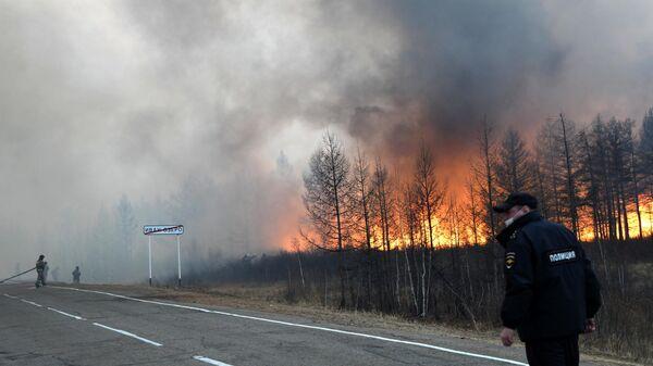 Сотрудники пожарной службы МЧС РФ во время тушения природного пожара около села Иван-Озеро в Забайкальском крае
