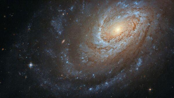 Спиральная галактика NGC 4651