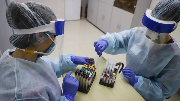 Медицинские работники обрабатывают полученный биоматериал на наличие антител к коровирусу