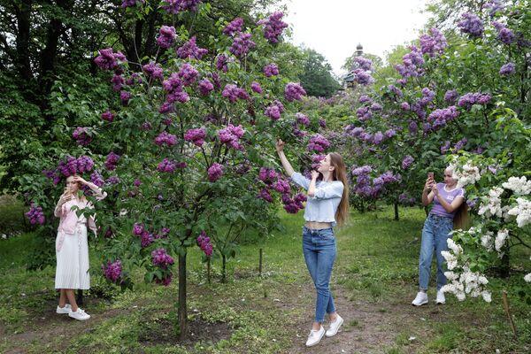 Девушки фотографируются с цветущей сиренью в Ботанический саду в Киеве, Украина