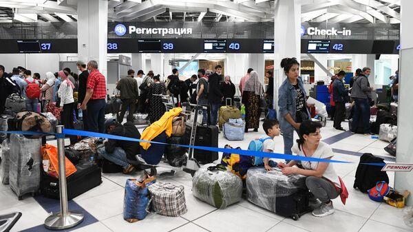 Граждане Узбекистана в аэропорту Толмачево оформляют билеты и проходят регистрацию на вывозной рейс в Ташкент