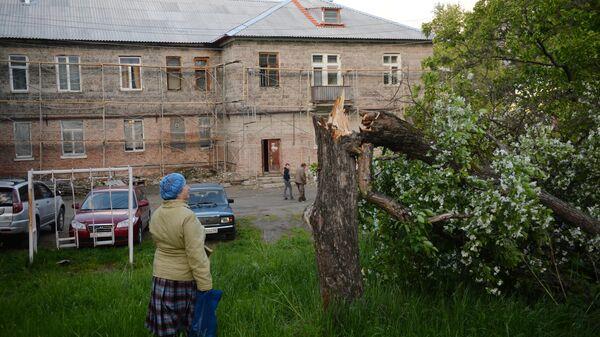 Сломанное дерево после ураганного ветра в Свердловской области