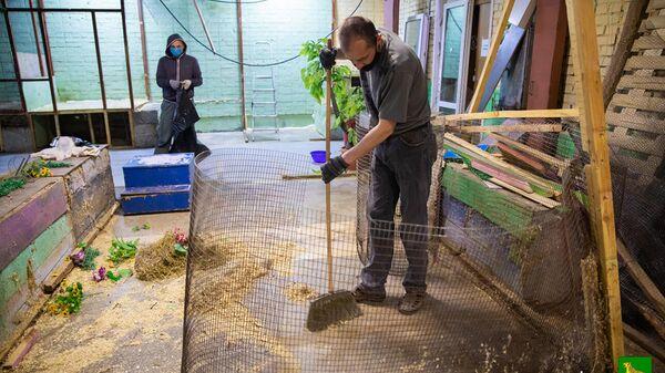 Рабочие убирают помещение