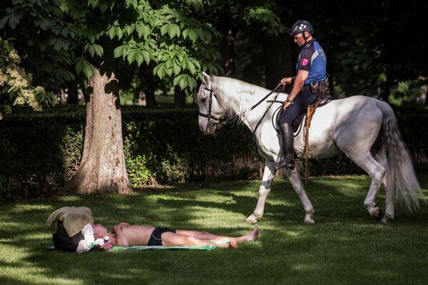 Сотрудник конной полиции и отдыхающий мужчина в парке дель Ретиро в Мадриде