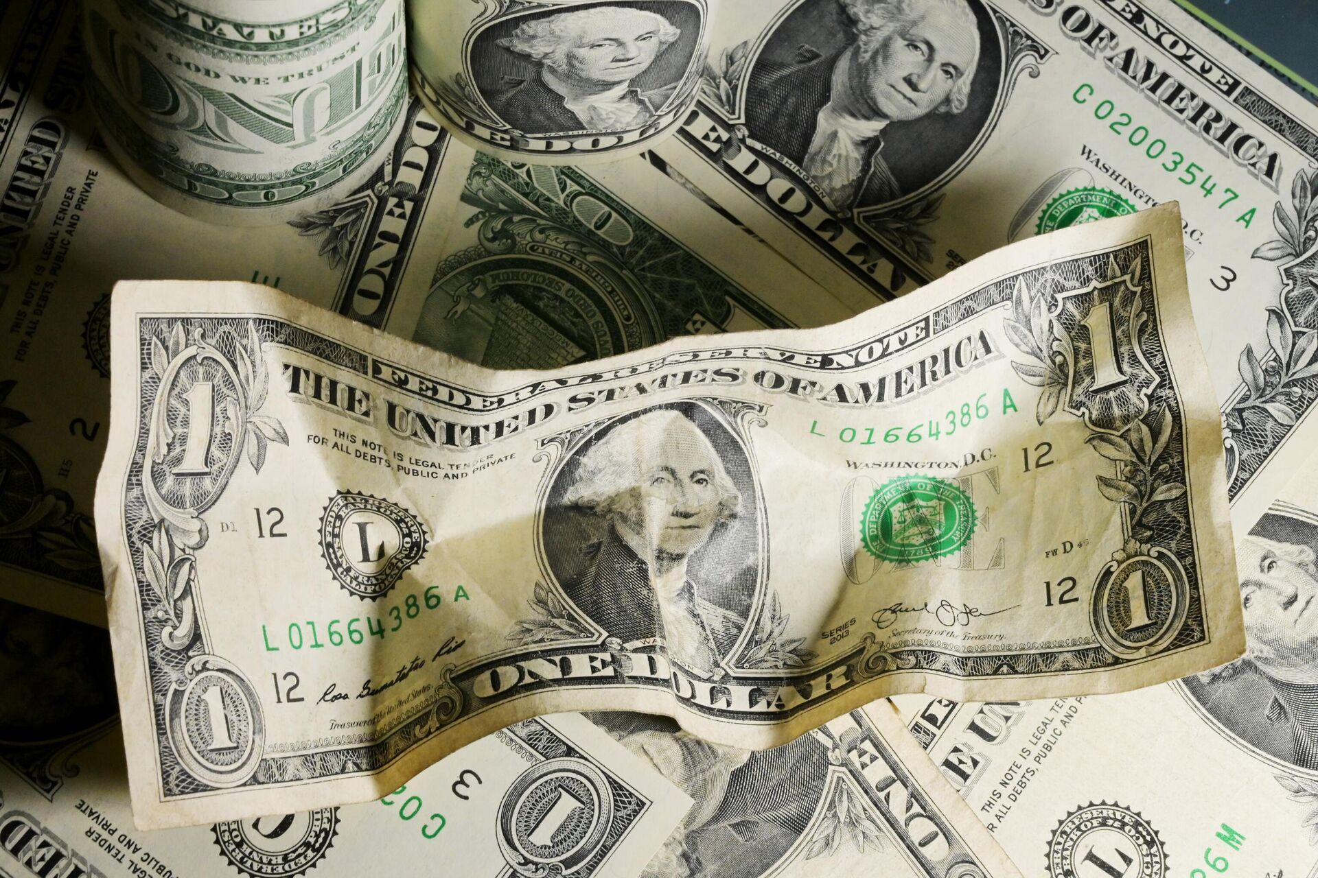 Американские доллары - РИА Новости, 1920, 19.01.2021