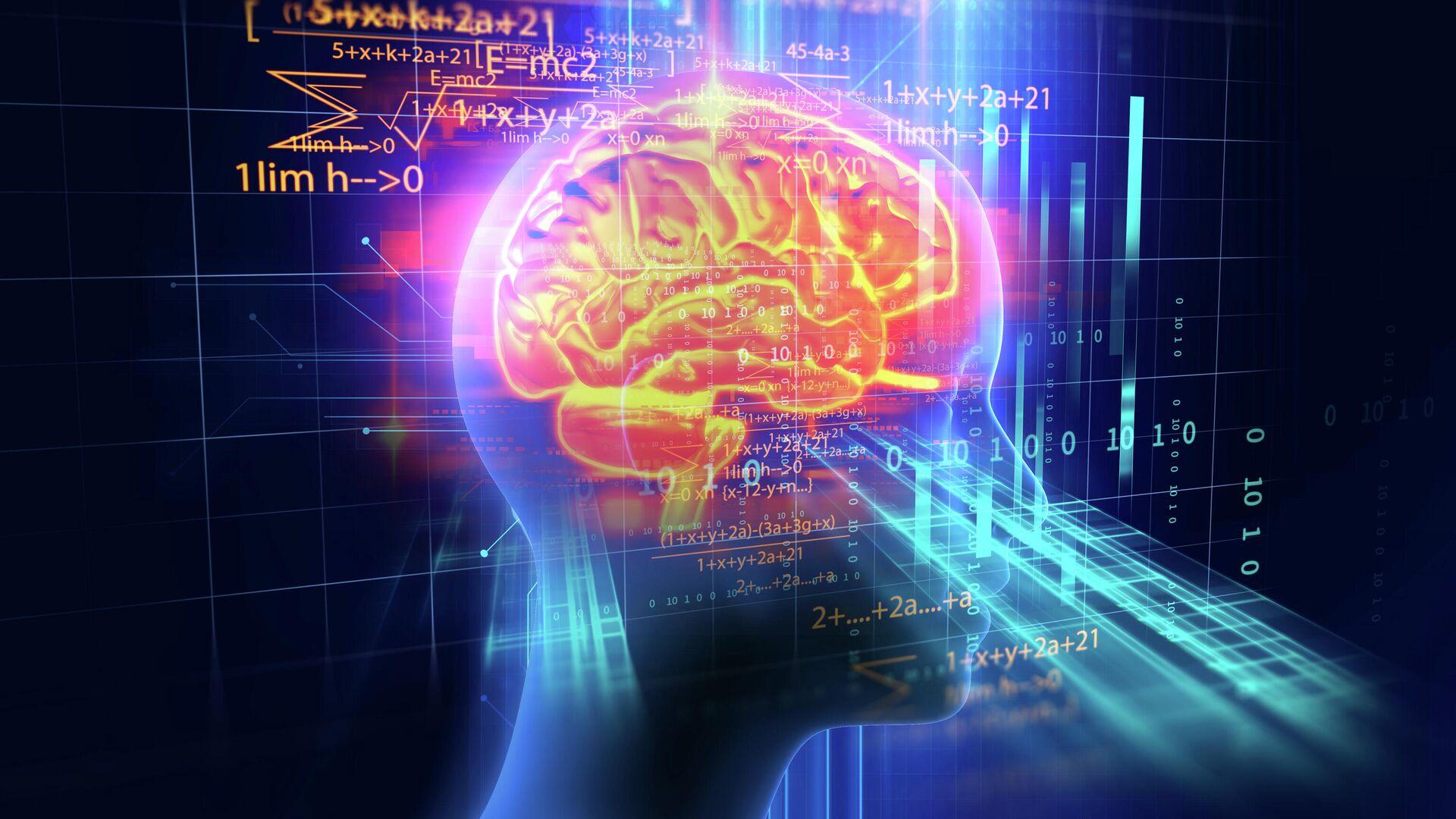 3d-модель мозга человека  - РИА Новости, 1920, 06.04.2021