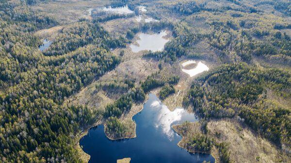 Лесные (ламбушки) озёра в Пряжинском районе Республики Карелия