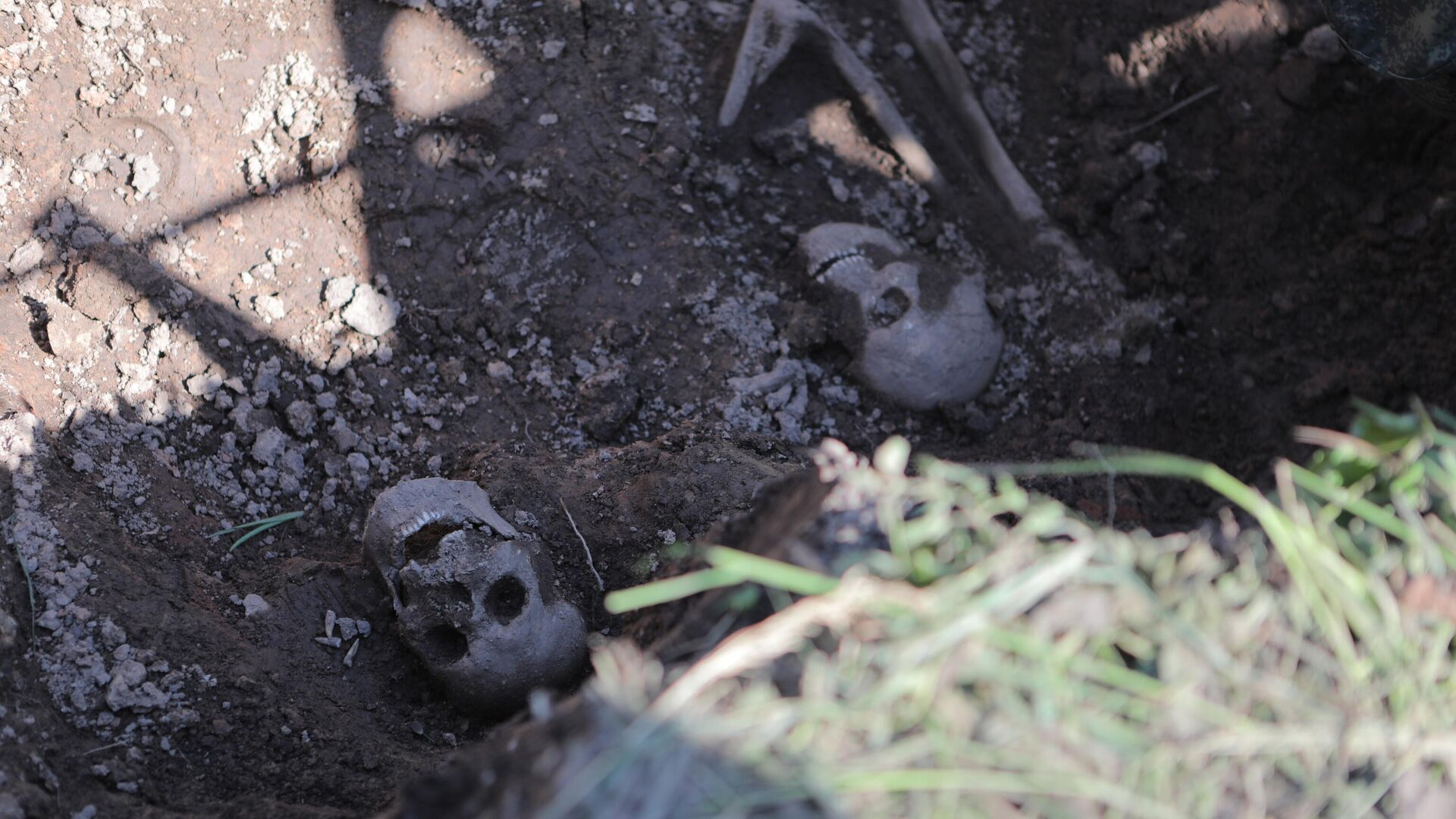 Суд начинает рассмотрение дела о зверствах нацистов в Псковской области