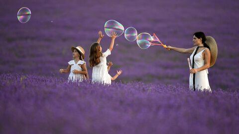 Женщина с детьми играет на лавандовом поле в Крыму