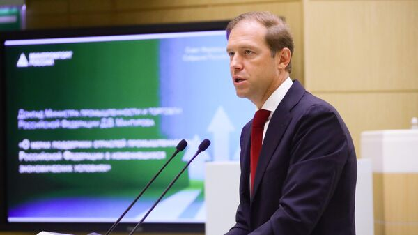 Министр промышленности и торговли РФ Денис Мантуров выступает в рамках правительственного часа на заседании Совета Федерации РФ
