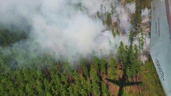 Самолёт-амфибия Бе-200ЧС МЧС РФ производит сброс воды на горящие участки леса во время тушения лесных пожаров в Иркутской области