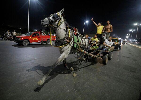 Торговцы во время скачек на повозках в Каире, Египет