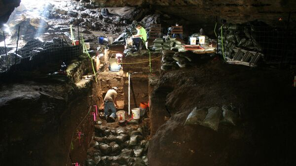 Археологические раскопки выявили причину последнего оледенения