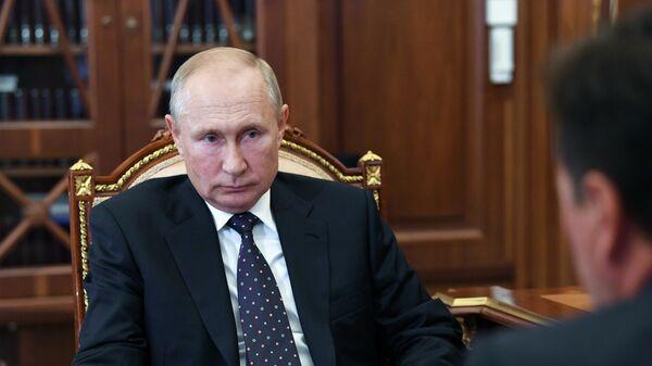 Президент РФ Владимир Путин и губернатор Московской области Андрей Воробьев (справа) во время встречи в Кремле