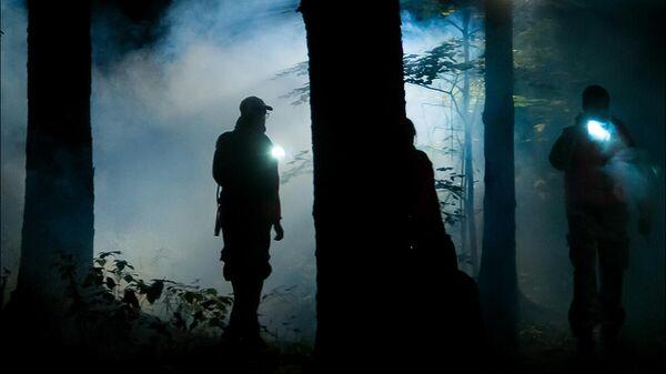 Поиск пропавших в лесной полосе