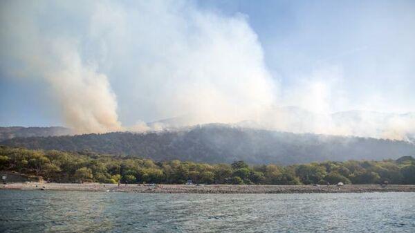 Лесной пожар на Утрише