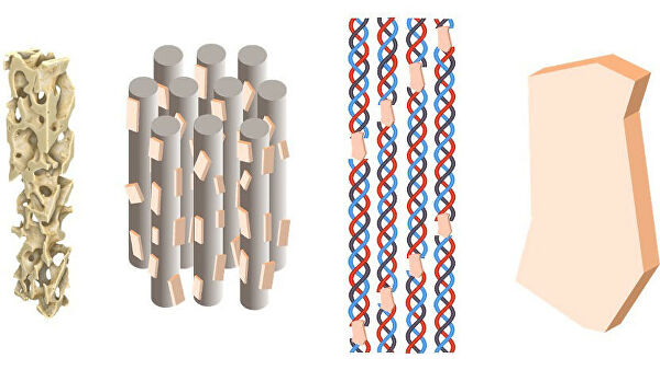 Структура костной ткани на наноуровне. Слева направо: трабекулярная костная ткань (масштаб - десятки миллиметров); фибрильно-минеральная матрица (сотни нанометров); коллагеновые фибриллы с встроенными минералами (десятки нанометров); минеральные пластины (первые нанометры)