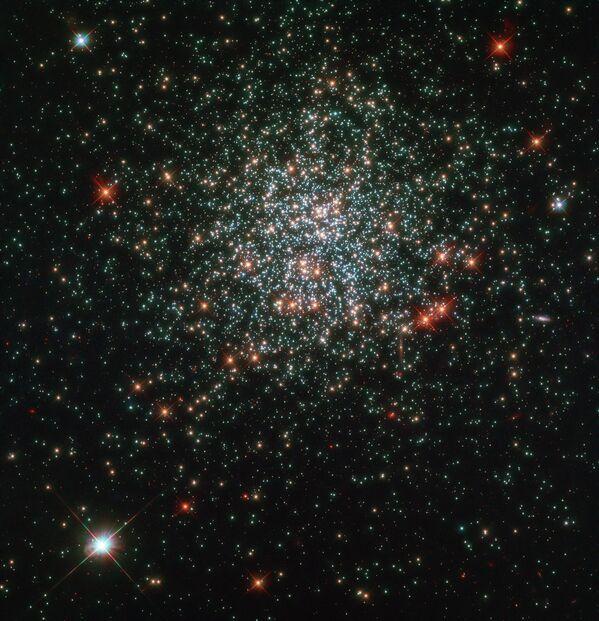 Звездное скопление NGC 2203, сфотографированное космическим телескопом Hubble