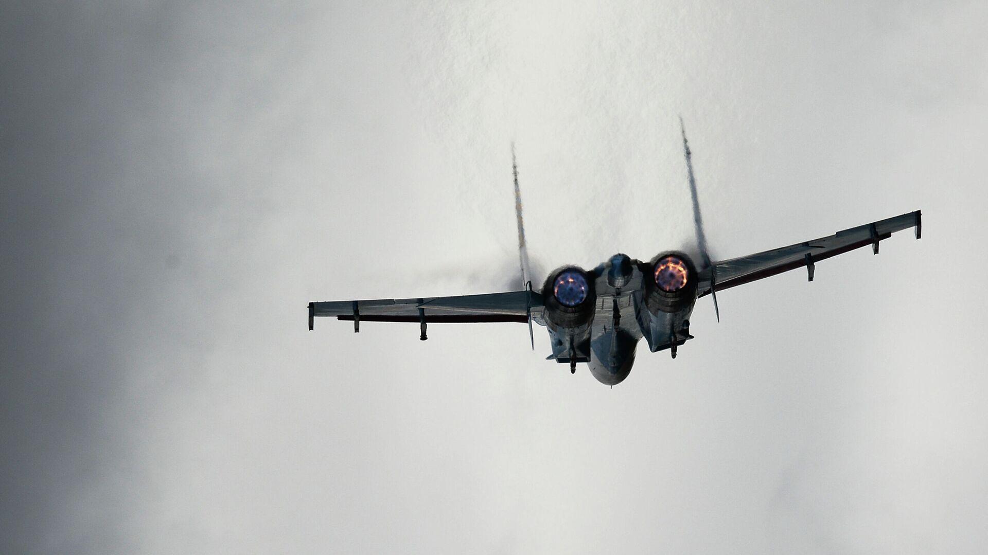 Самолет Су-27 - РИА Новости, 1920, 08.09.2020