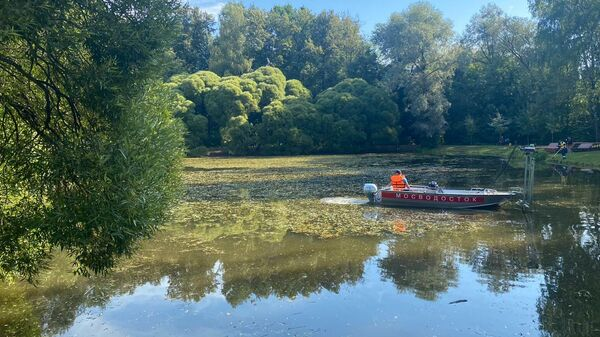 Работы по очистке Нарышкинского пруда в Москве
