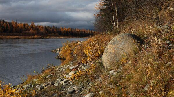Река Собь в районе поселка Харп в Приуральском районе Ямало-Ненецкого автономного округа России