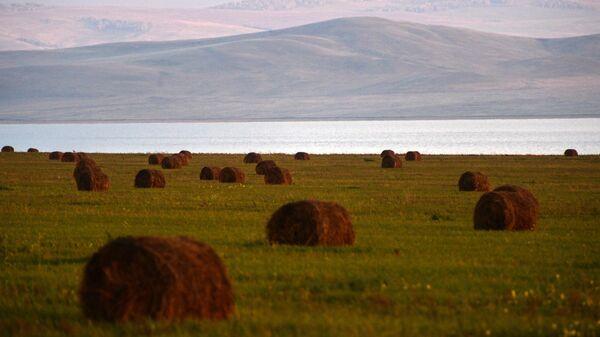 Стога сена на полях в Республике Хакасия