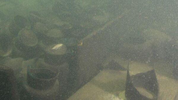 Останки затонувшего на Балтике корабля XVIII века. Кадры РГО