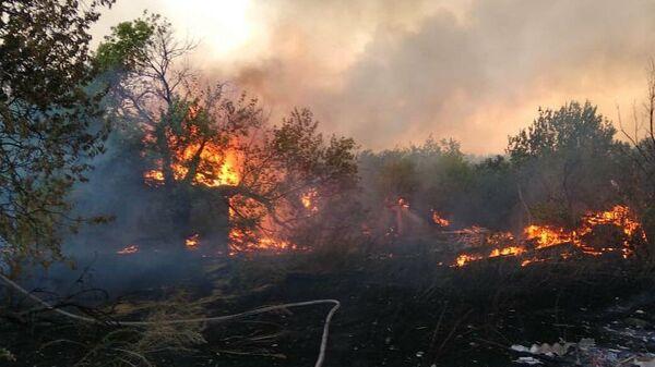 Тушение ландшафтных пожаров в Ростовской области