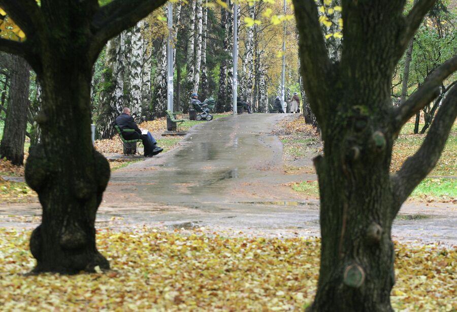 Парковая зона у Северного речного порта в осенний, пасмурный день.