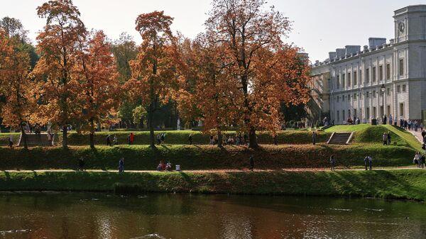 Карпин пруд и Большой Гатчинский дворец на территории музея-заповедника Гатчина в Ленинградской области