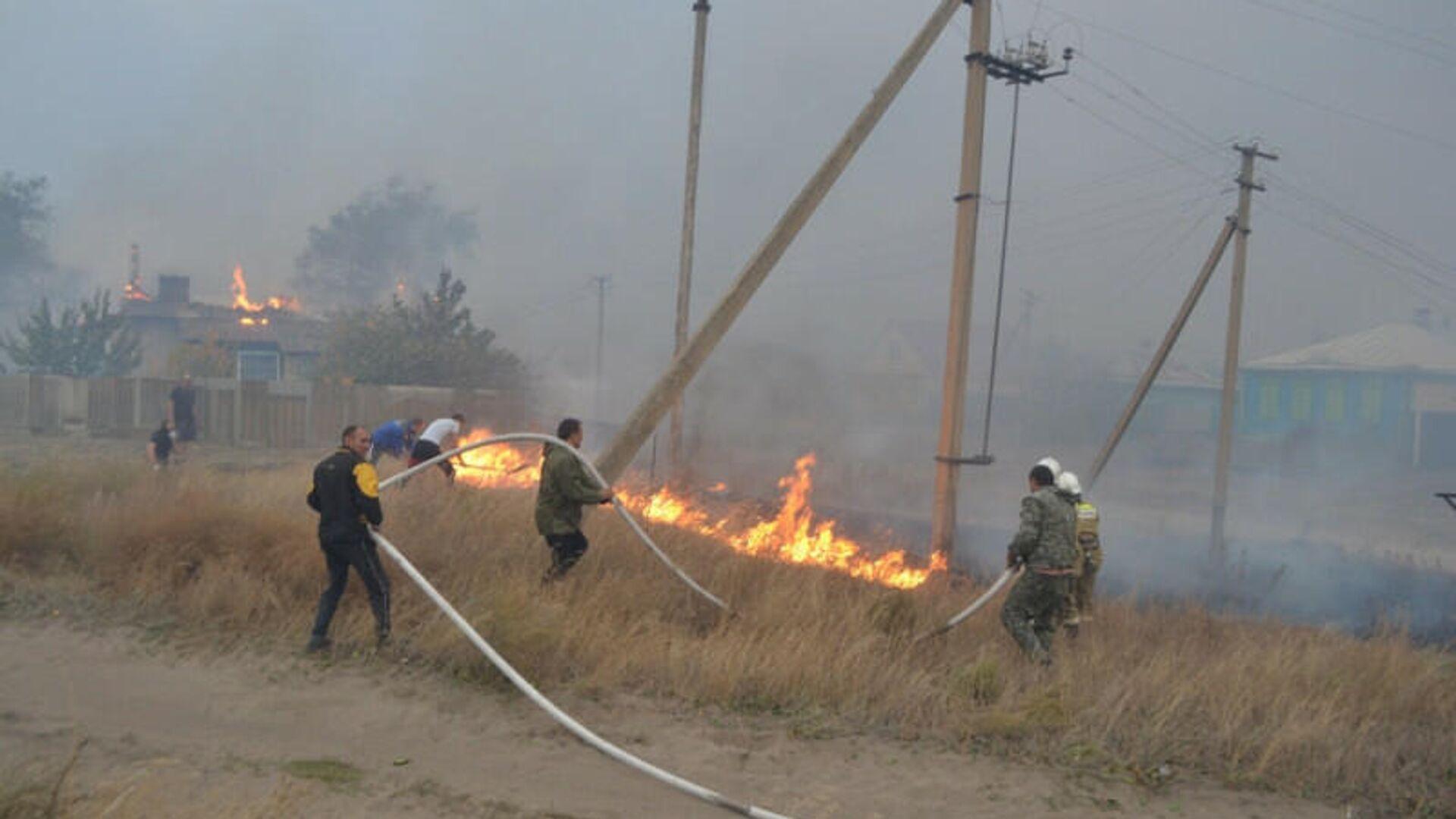 1578058161 0:42:800:492 1920x0 80 0 0 5fd8cbf7375afe4c77383c44aac4e6b4 - В Воронежской области локализовали два ландшафтных пожара