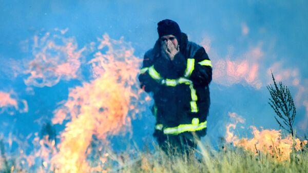 Сотрудник МЧС РФ на месте лесного пожара в Воронежской области