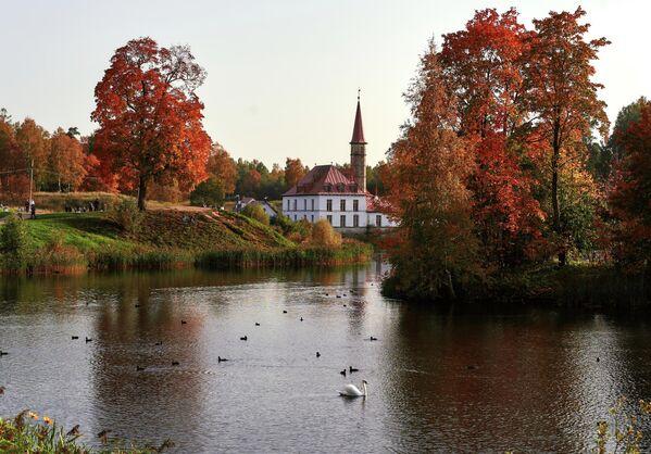 Золотая осень в Ленинградской области