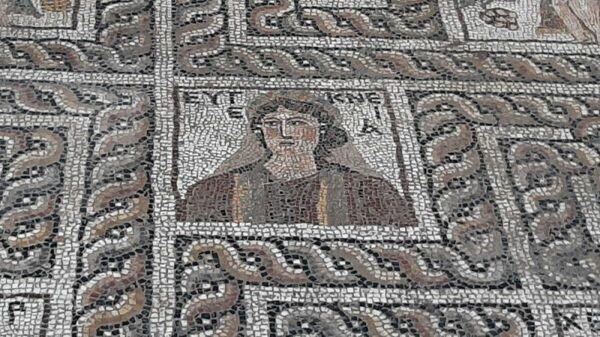 Мозаика, обнаруженная во время раскопок в турецкой провинции Кадирли