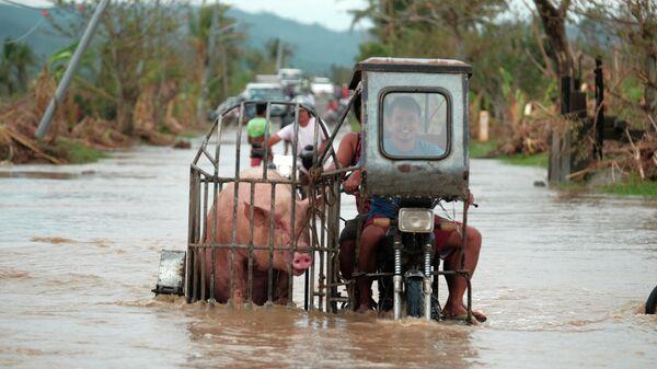 Мотоциклист везет свинью по затопленной дороге в провинции Албай на Филиппинах