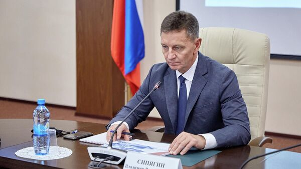 Губернатор Владимирской области Владимир Сипягин