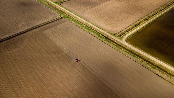 Посев риса в хуторе Ольгинский Краснодарского края