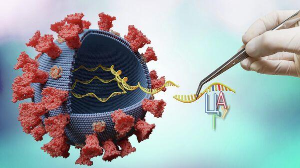 Вирус с молекулой РНК внутри